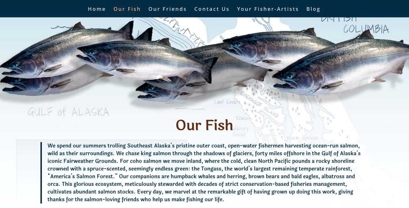 screenshot of jack mckee's author website