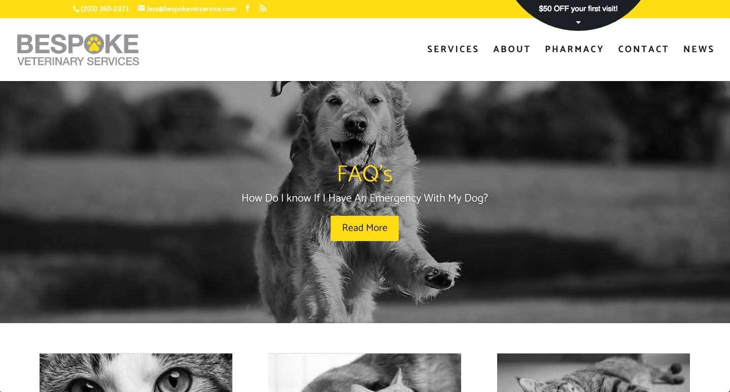 screen shot from bespoke veterinary website